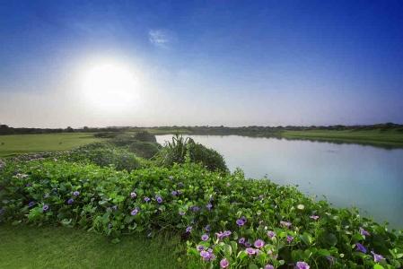 Golf de Muscat Hills avec votre pro