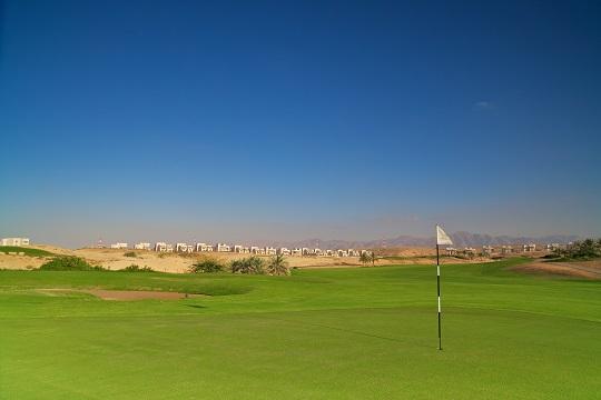 Découverte des golfs de Muscat et Abu Dhabi